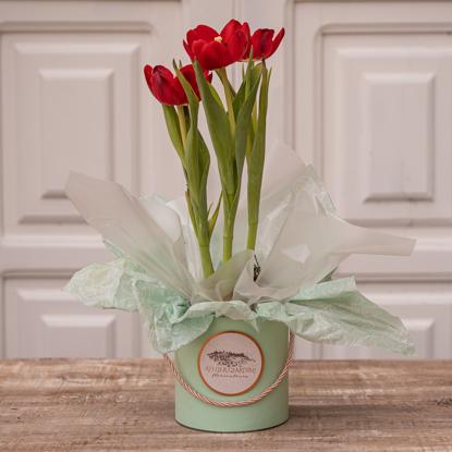 Imagem de Cachepot de Tulipa Dia das Mães